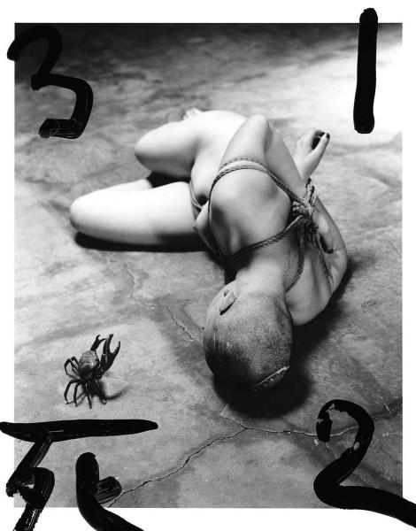 Artist bondage model photographer writer porn actress hard